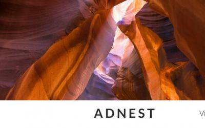 Adnest. Be an Entrepreneur